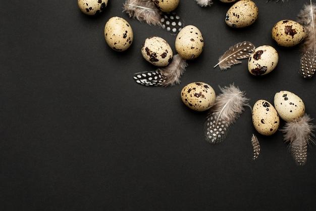 Ovos de codorna com penas em um fundo preto com copyspace. férias da páscoa, composição minimalista em preto Foto Premium
