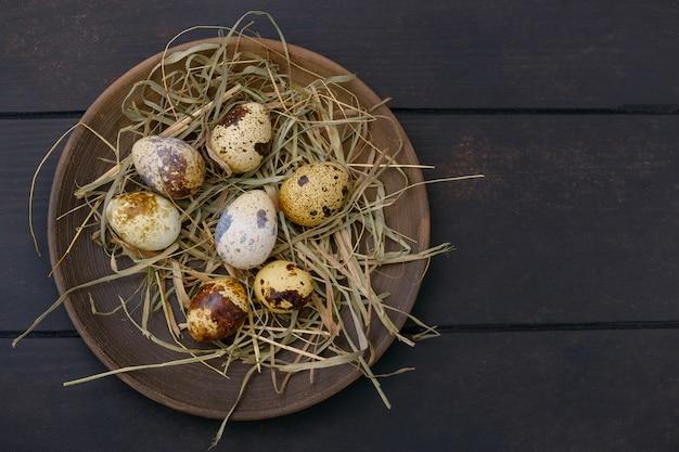Ovos de codorna de páscoa em prato com feno