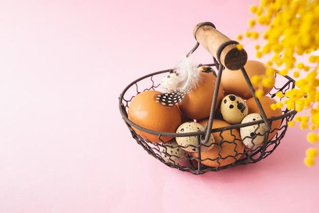 Ovos de codorna e galinha na cesta de metal com penas em fundo rosa pastel