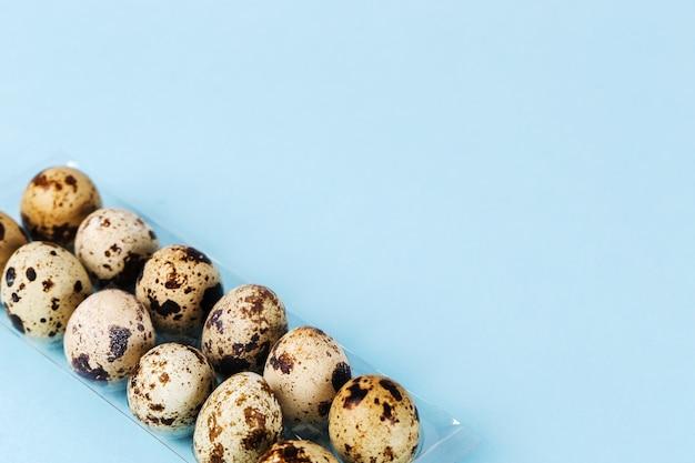 Ovos de codorna em azul
