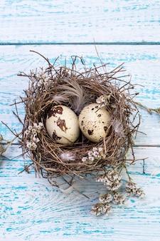 Ovos de codorna em um ninho de pássaro em uma madeira