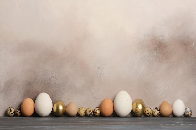 Ovos de codorna, galinha, ganso e pintadas de diferentes tamanhos e cores estão em uma fila contra o fundo cinza da parede antiga