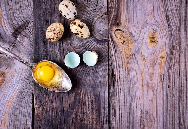 Ovos de codorna gema em uma colher de ferro
