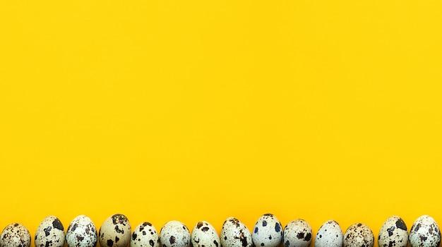 Ovos de codorna manchados em um fundo amarelo na borda inferior do quadro.