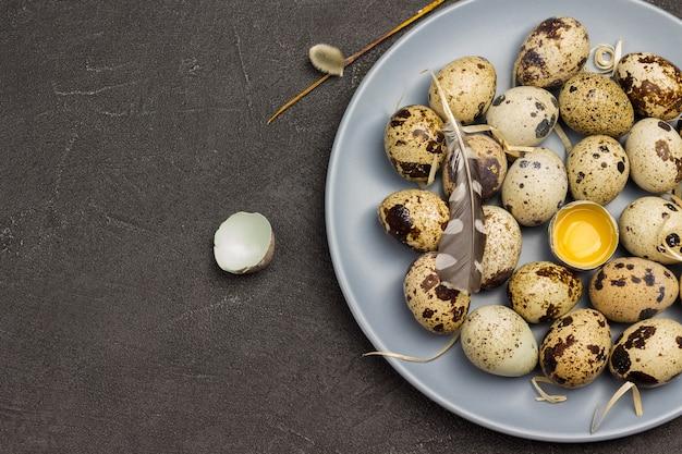 Ovos de codorna na placa cinza. ovo quebrado no prato. pena de pássaro. postura plana. copie o espaço