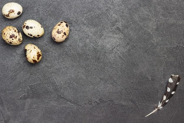 Ovos de codorna na vista superior de fundo de concreto escuro