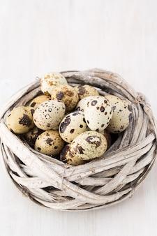 Ovos de codorna ninho de pássaros