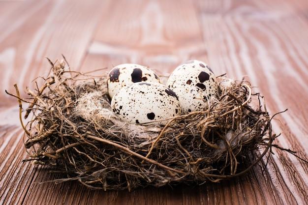Ovos de codorna no ninho em uma mesa de madeira