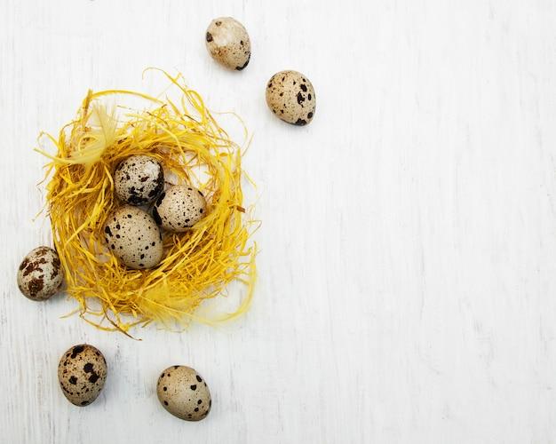 Ovos de codorna no ninho