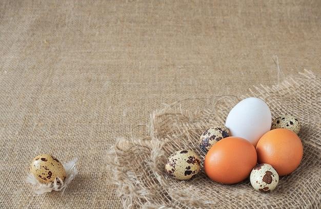 Ovos de codorna orgânicos e ovos de galinha marrom e branco no saco de linho marrom