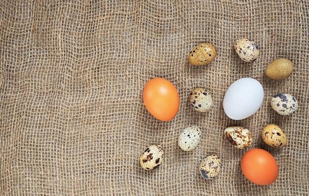 Ovos de codorna orgânicos e ovos de galinha marrom e branco