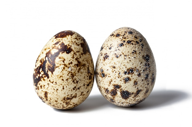 Ovos de codorna são isolados em um branco