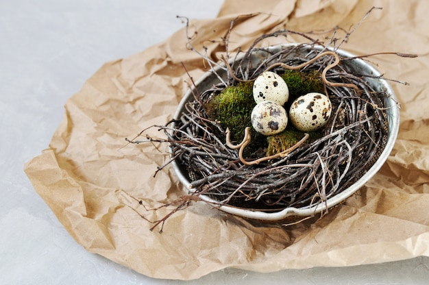 Ovos de codorniz no musgo natural verde em um ninho dos ramos feitos em uma peneira velha do ferro. cartão retro eco-amigável do conceito para a páscoa.