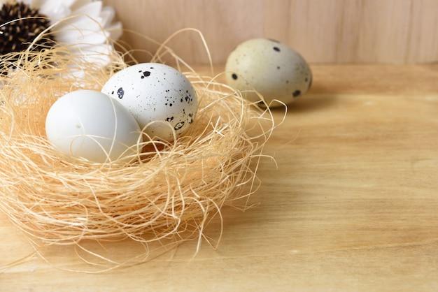 Ovos de codorniz no ninho em um fundo de madeira.