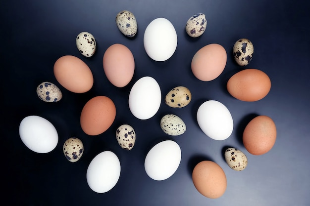 Ovos de galinha diferentes repousam aleatoriamente na superfície azul escura