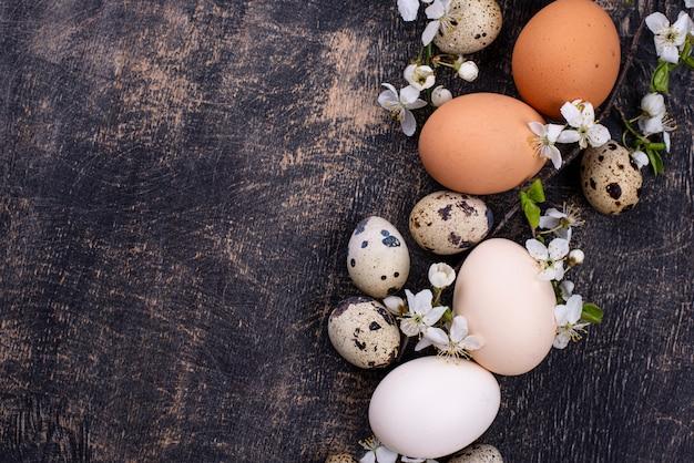 Ovos de galinha e codorna com galho de florescência