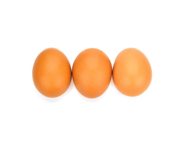 Ovos de galinha em fundo branco