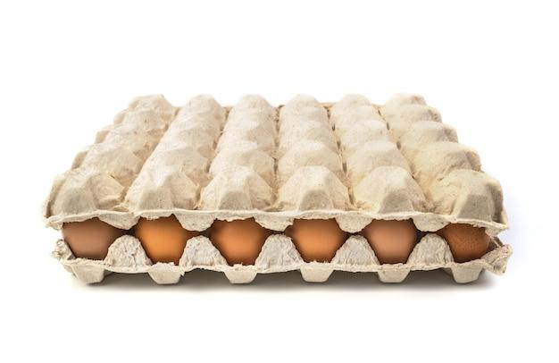 Ovos de galinha em uma caixa de papelão isolada no branco