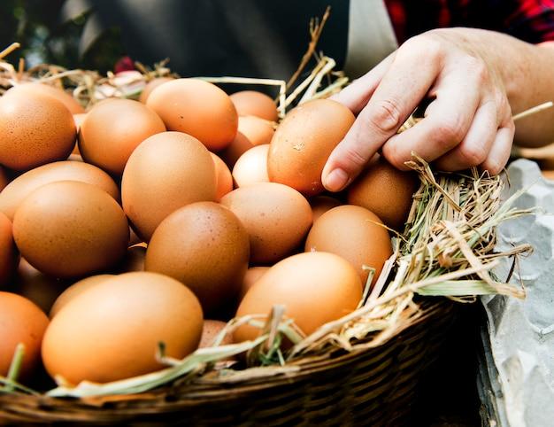 Ovos de galinha fresca galo no feno no mercado local de agricultor