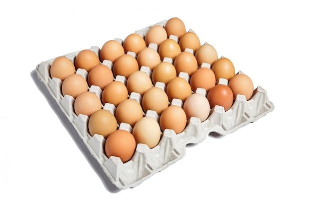 Ovos de galinha na bandeja de papelão