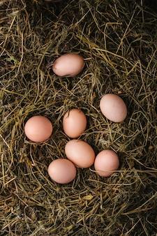Ovos de galinha no ninho. conceito de comida ecológica. vista superior, copie o espaço