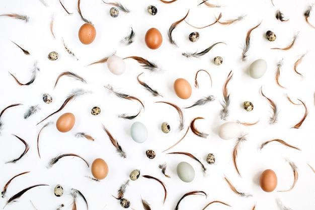 Ovos de páscoa brancos e marrons, ovos de codorna e penas na superfície branca