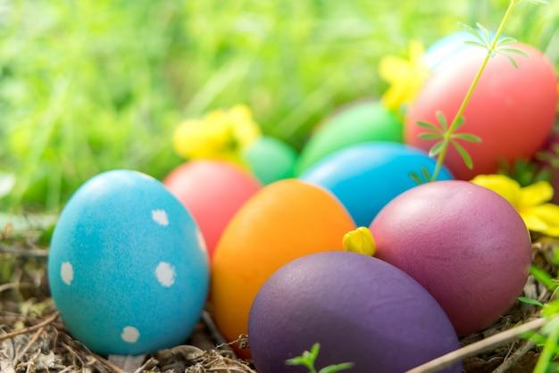 Ovos de páscoa coloridos caçam decorações do feriado fundo do conceito de páscoa