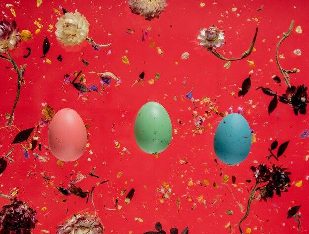 Ovos de páscoa coloridos e pétalas de chá secas sobre fundo vermelho. acima vista