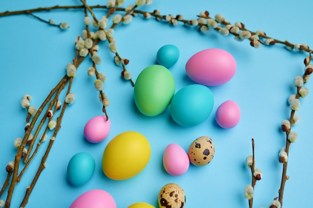 Ovos de páscoa coloridos e salgueiro na mesa azul, vista superior.