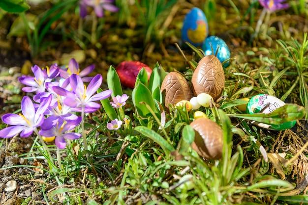 Ovos de páscoa de chocolate em um jardim