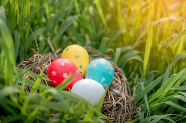 Ovos de páscoa de plástico colorido no ninho