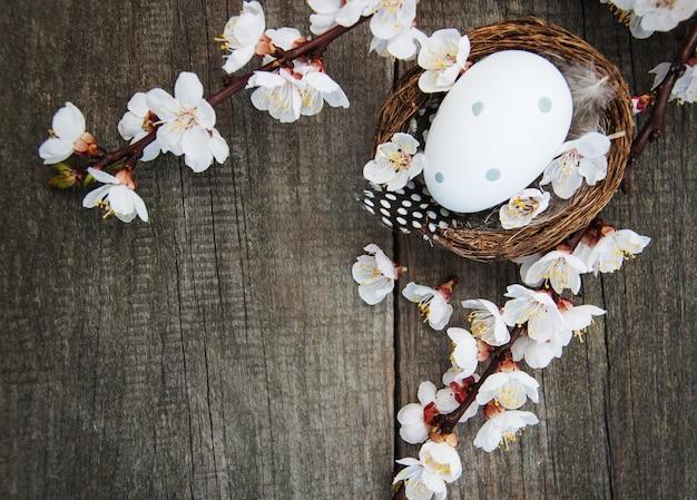 Ovos de páscoa e fundo de flor de primavera
