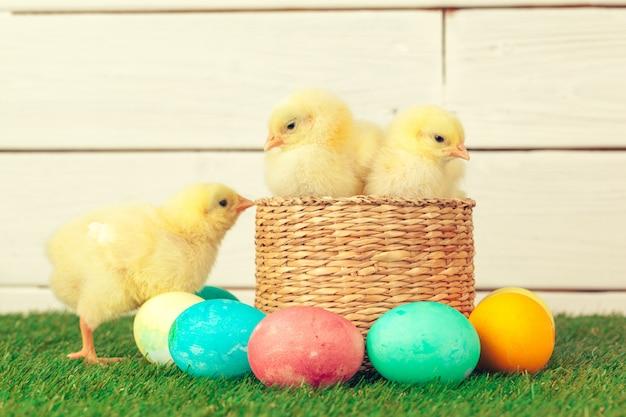 Ovos de páscoa e galinhas na grama verde