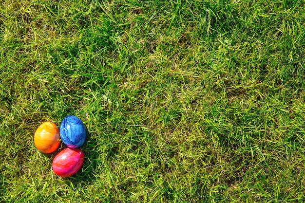 Ovos de páscoa estão escondidos na grama