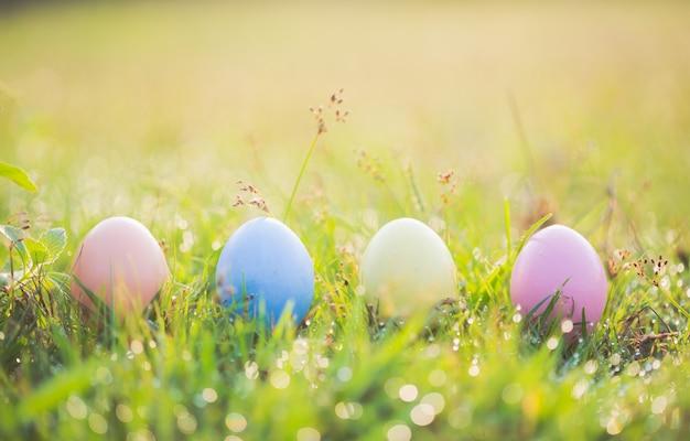 Ovos de páscoa na grama verde