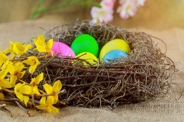 Ovos de páscoa no cesto com colorido decorado em um arco-íris de cores