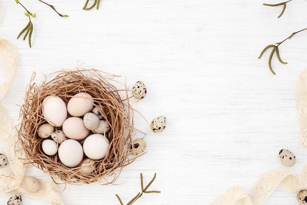 Ovos de páscoa no ninho, galhos de salgueiro primavera em fundo branco, espaço de cópia, postura plana.