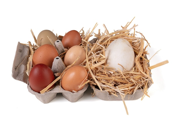 Ovos de vários tamanhos e cores com palha em uma parede branca