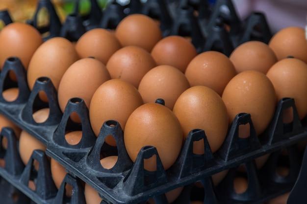 Ovos em caixa de ovo