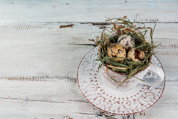 Ovos em um ninho em uma xícara de café velha
