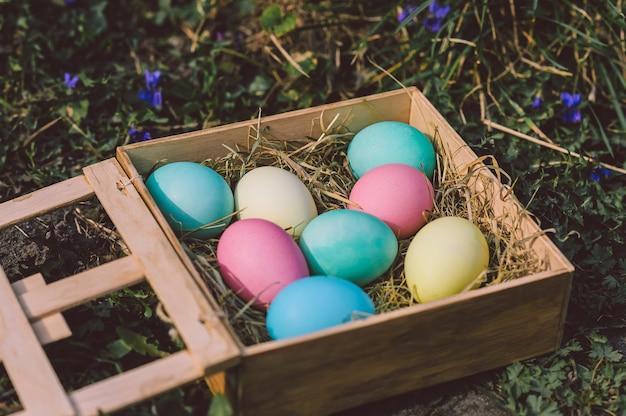Ovos em uma caixa de madeira em um fundo de flores e terra. conceito de páscoa.