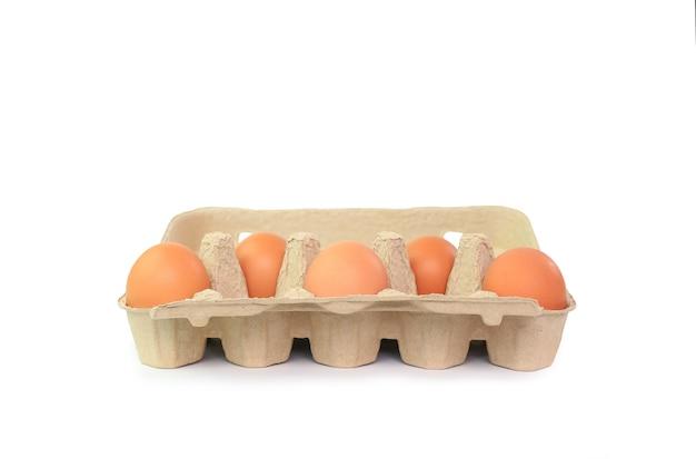 Ovos marrons de frango em caixa de papelão, isolados no fundo branco