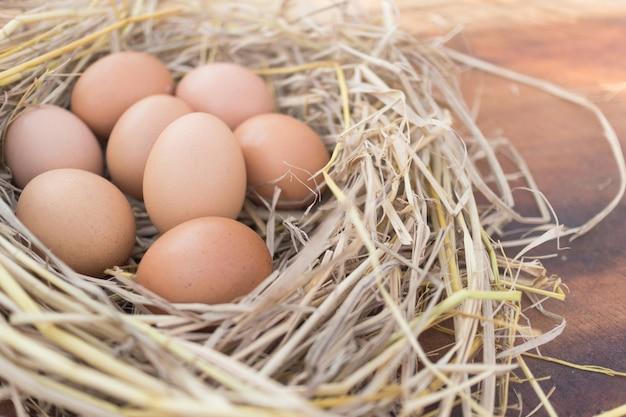 Ovos marrons frescos em um ninho em um de madeira na exploração agrícola de galinha com luz solar da manhã, imagem com espaço da cópia.