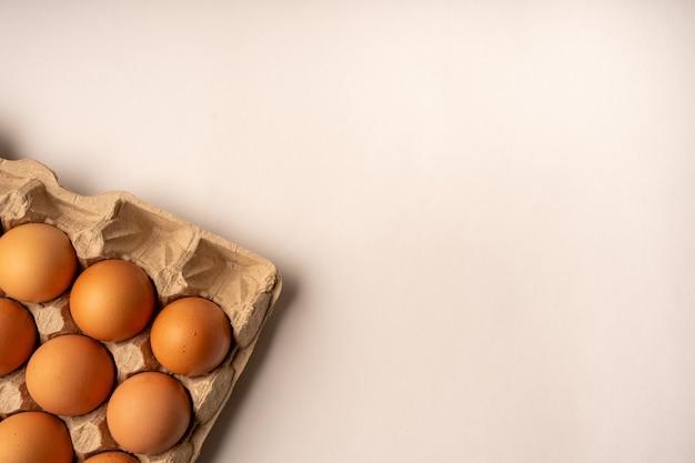 Ovos marrons no porta-ovos.