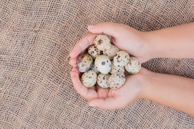 Ovos orgânicos nas mãos de um homem