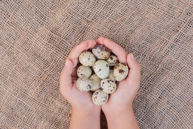 Ovos orgânicos nas mãos de um homem.