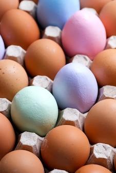 Ovos orgânicos naturais da fazenda e parte deles são pintados à mão em uma bandeja ecológica de papel