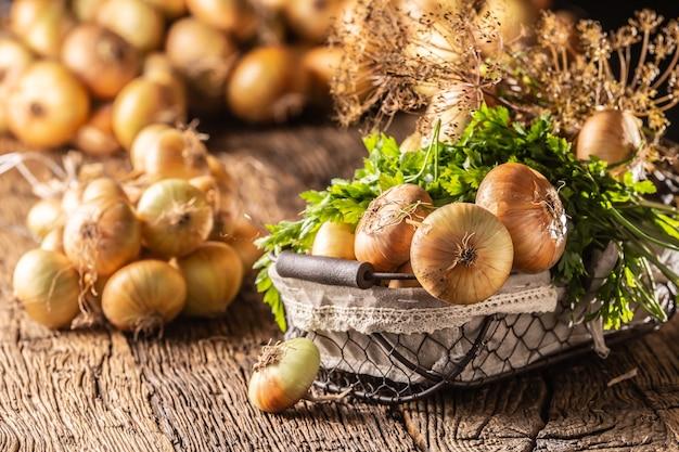 Pacote de cebola seca livremente deitada com ervas de salsa e endro em uma cesta sobre uma mesa de madeira.