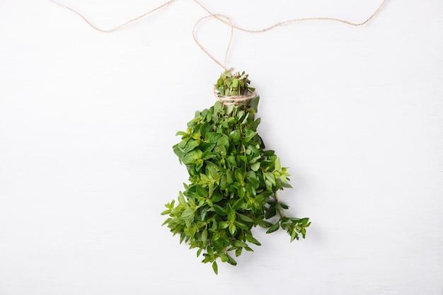 Pacote de ervas frescas verdes orégano