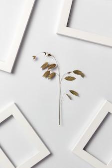 Padrão criativo à base de plantas de galho de folha e quadros vazios em uma parede cinza clara com lugar para texto. postura plana.